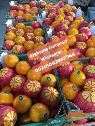 برتقال طازج
